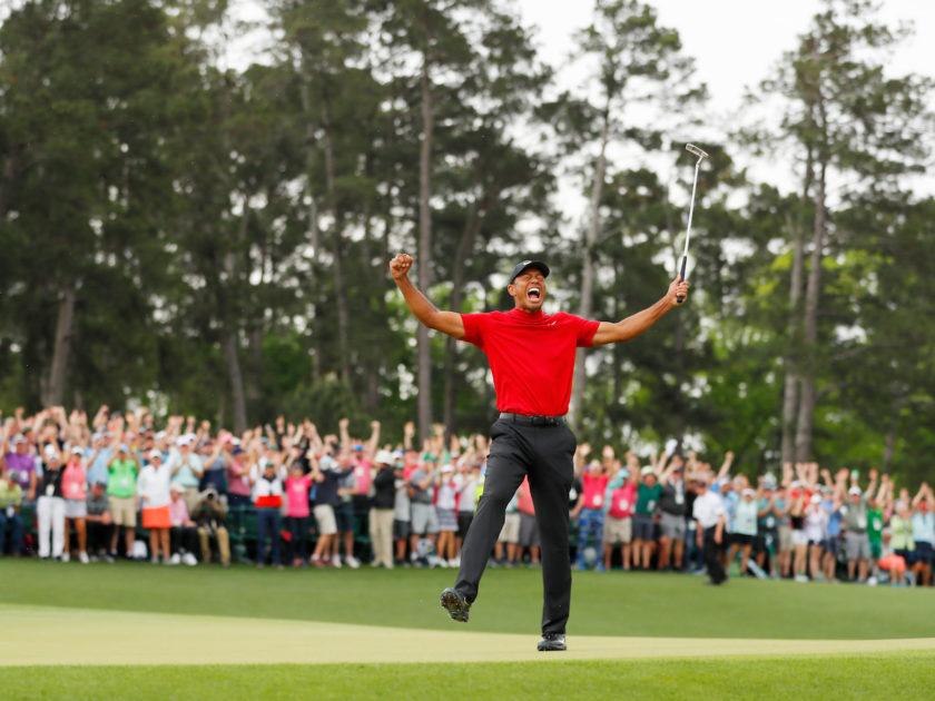 Tiger: i numeri di una leggenda