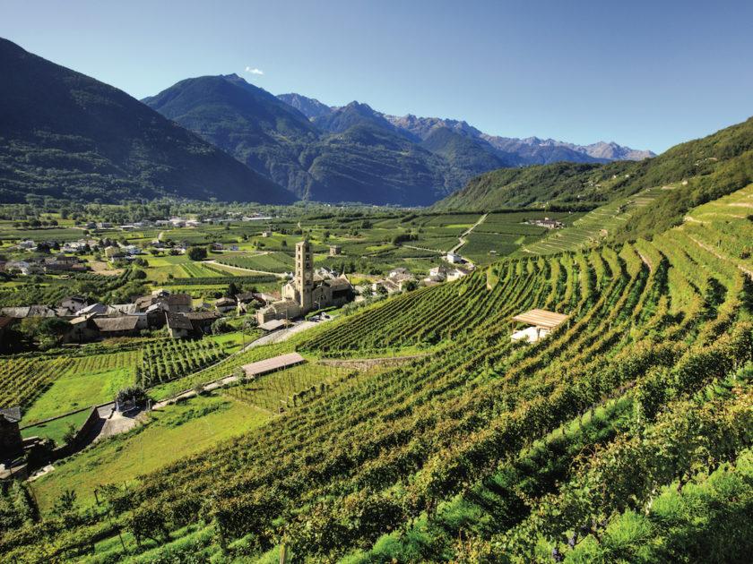 """Valtellina: tre """"cru"""" da provare"""