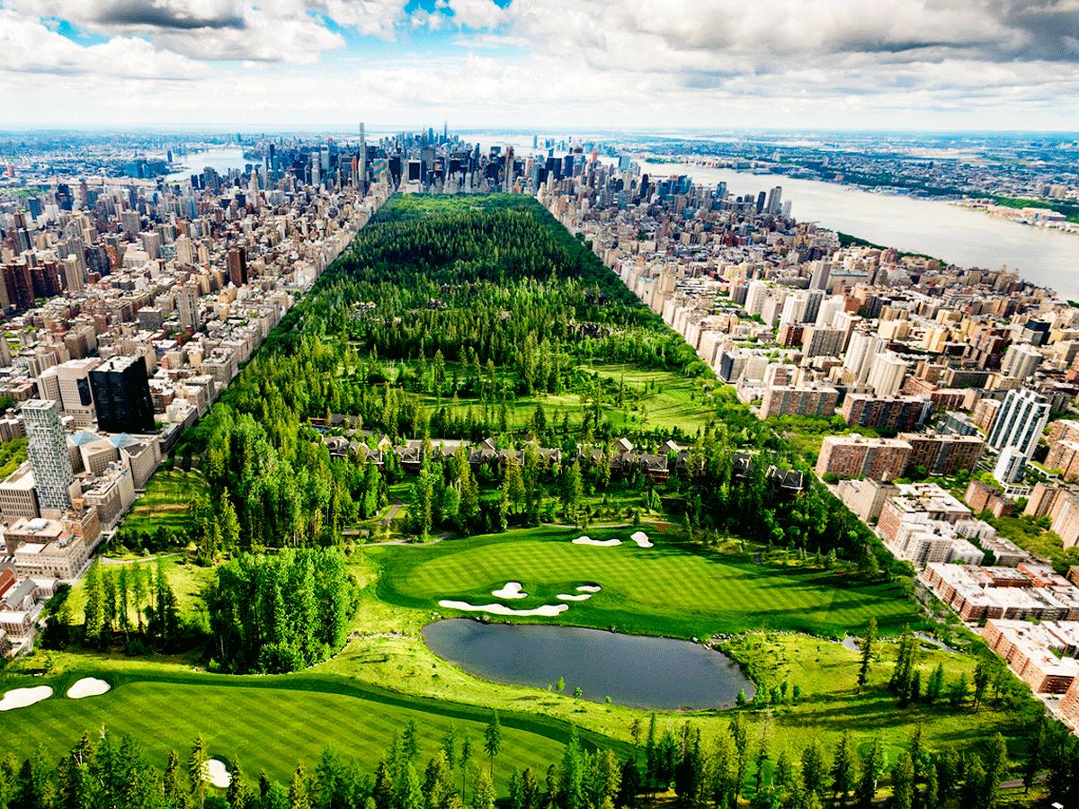 golf_tips_campi_golf_parkland_o_links_parkland_in_centralpark