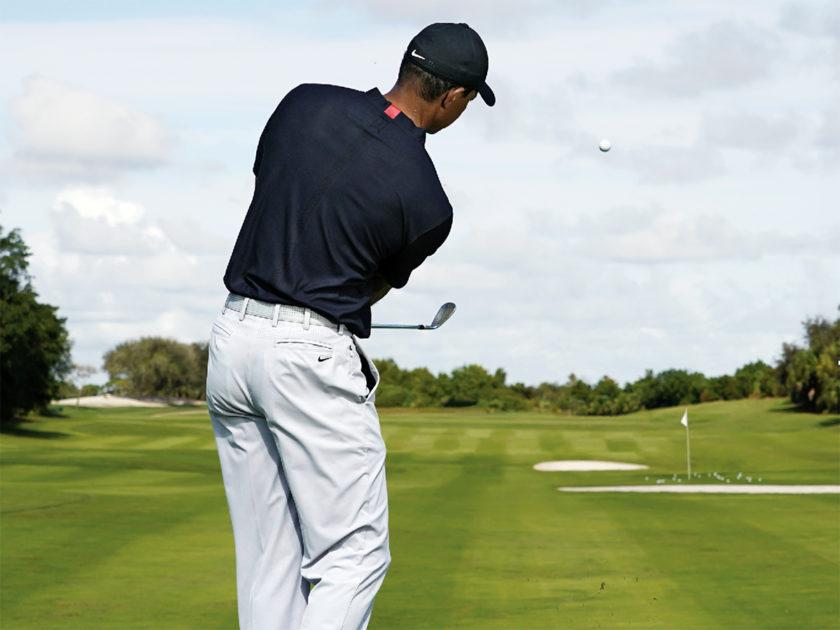 I chip vincenti di Tiger Woods